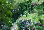 昼下がりの庭園