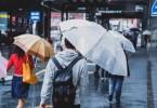大雨で風邪ひく