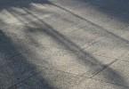 影が差し込む道