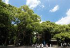 明治神宮入り口の鳥居