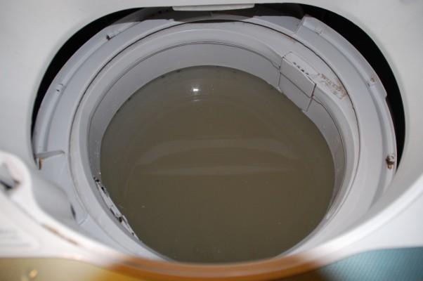 黒カビをすくい取った後の洗濯槽