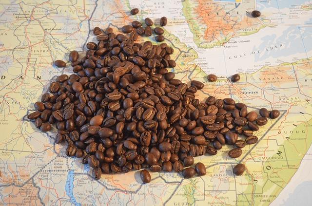 コーヒー豆とエチオピア